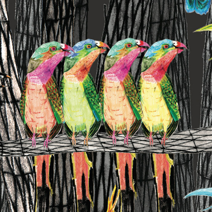 Grey Go-Away Bird and the Bright and Colourful Birds 1