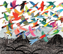 Grey Go-Away Bird and the Bright and Colourful Birds 2